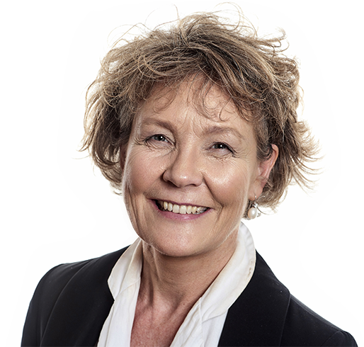Susanne Hendriksen - Partner at Genux